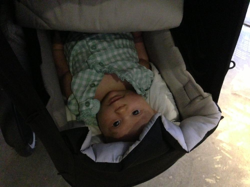 Bästa barnvagnen del 1: Phil & Teds Navigator (2/6)
